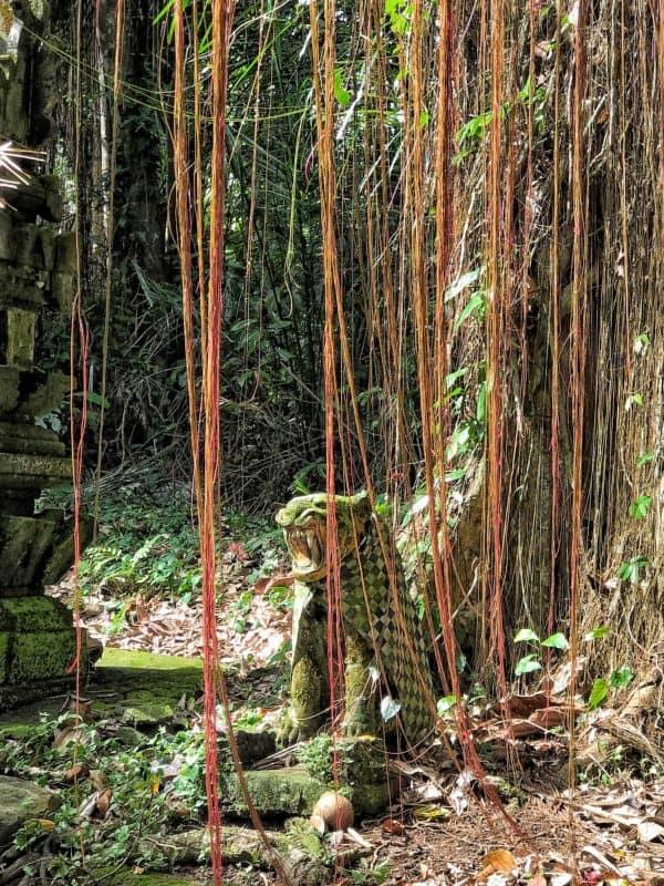 aj v balijskej džungli sú ochrancovia. Ľudia ich obliekajú, ako živé bytosti.